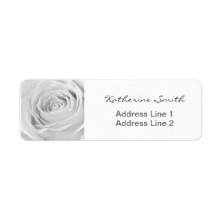 Rosa branco da foto floral da natureza do endereço etiqueta endereço de retorno