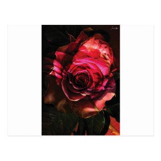 rosa com folhas bombom colors cartões postais