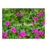 Rosa cristãos do cartão do feliz aniversario