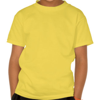 Rosa da menina do remoinho t-shirts