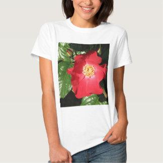 Rosa de arbusto 223 do açafrão camiseta