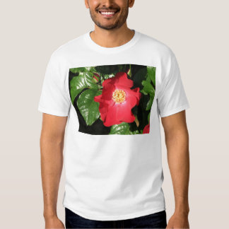 Rosa de arbusto 223 do açafrão tshirts