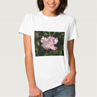 Rosa de arbusto engraçado 115 da cara tshirt