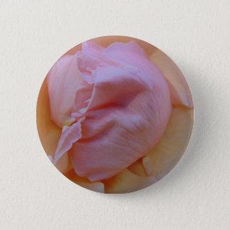 Rosa delicado bóton redondo 5.08cm