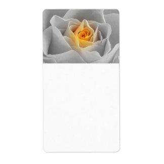 Rosa delicado das cinzas etiqueta de frete