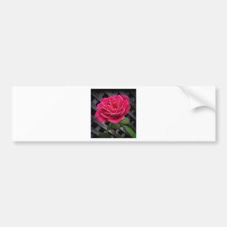 Rosa do rosa adesivo para carro