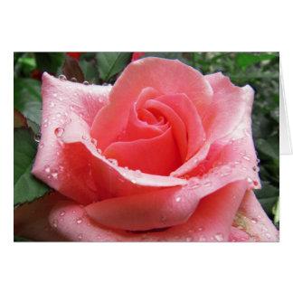 Rosa do rosa com o cartão de nota do orvalho