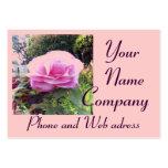 Rosa do rosa com o cartão de visita de 2013 calend