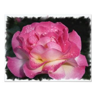 Rosa do rosa convite 10.79 x 13.97cm