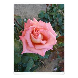 rosa do rosa convite 12.7 x 17.78cm
