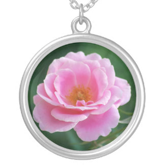 Rosa do rosa na flor completa e no significado bijuterias