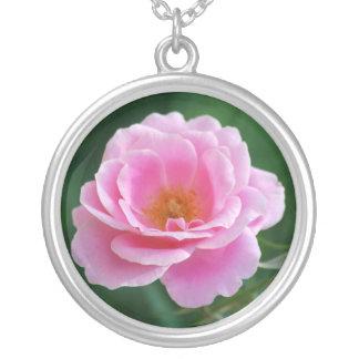 Rosa do rosa na flor completa e no significado colar com pendente redondo