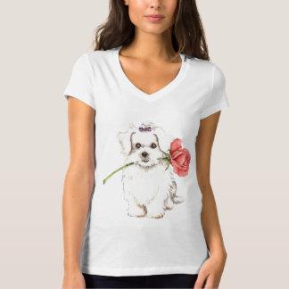 Rosa dos namorados maltês camiseta