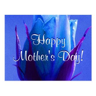 Rosa feliz do azul do dia das mães