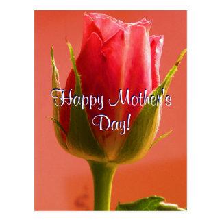 Rosa feliz do rosa do dia das mães mim