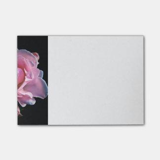 Rosa lindo do rosa no preto bloquinho de notas