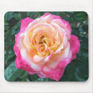 Rosa Mousepad do rosa