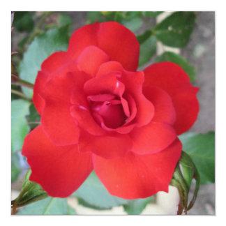 Rosa Roja Flor Convites Personalizado