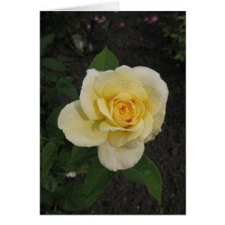 Rosa születésnapot-amarelo Húngaro-Boldog Cartão Comemorativo