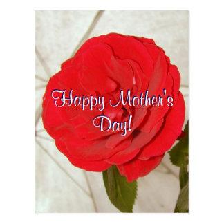 Rosa vermelha feliz do dia das mães
