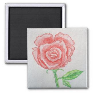 Rosa vermelha ímã quadrado