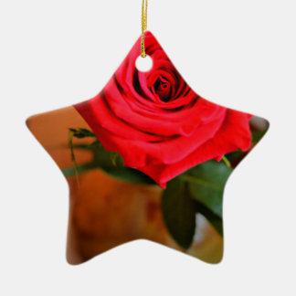 Rosa vermelha ornamento de cerâmica estrela