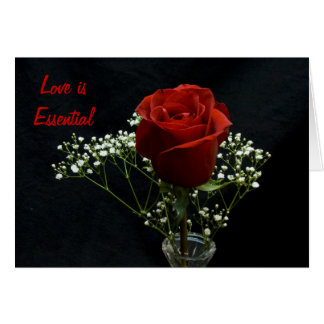 Rosa vermelha/príncipe pequeno Cartão