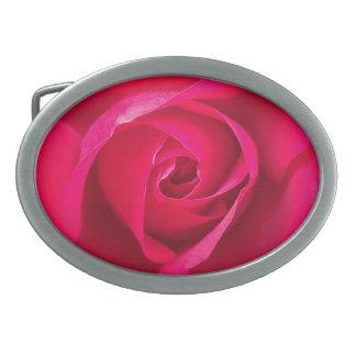Rosa vermelho romântico v2 do rosa