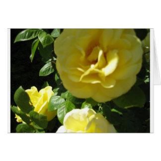 Rosas amarelos Notecard Cartão De Nota