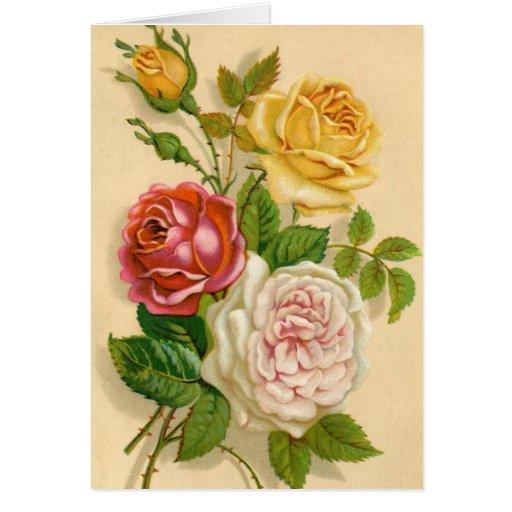 Rosas do vintage, aniversário alemão cartao