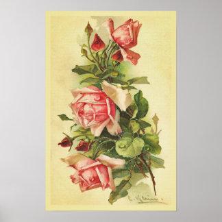 Rosas do vintage com o poster das gotas de orvalho pôster