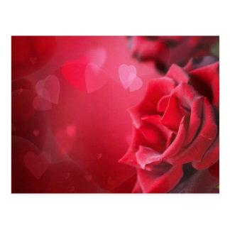 rosas e corações cartão postal