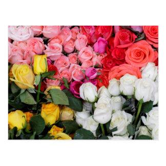 Rosas para a venda, San Miguel de Allende, México Cartão Postal