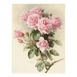 Rosas românticos do Victorian do vintage Cartão Postal