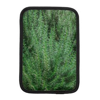Rosemary de incandescência Arbustos Luva Para iPad Mini