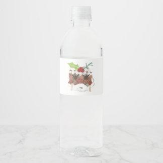 Rótulo De Garrafa De Vinho Senhora Pudim Água Rotulagem