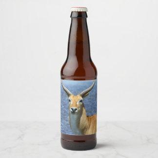 Rótulo Para Garrafa De Cerveja Antílope de Puku do africano