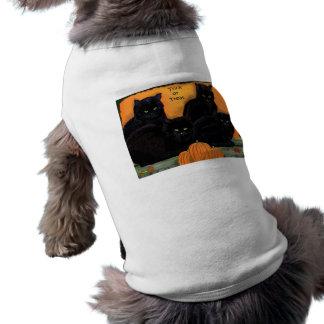 Roupa do animal de estimação do Dia das Bruxas dos Camisa Para Caes