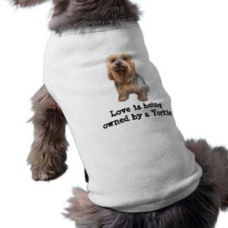 Roupa tão bonito do animal de estimação do yorkshi camisa sem mangas para cachorro