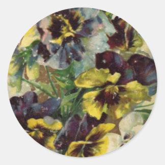 Roxo amarelo da etiqueta | dos Pansies do