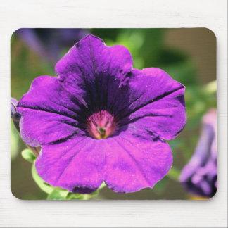 roxo de florescência mouse pad