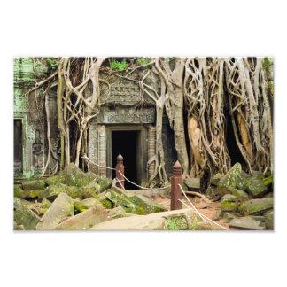 Ruínas do templo da selva de Ta Prohm em Cambodia Foto Arte