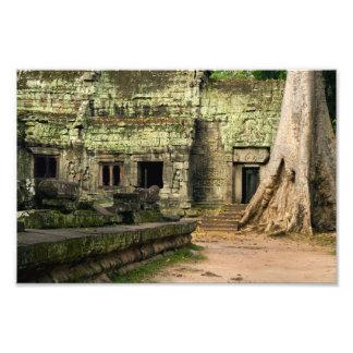 Ruínas do templo de Ta Prohm em Cambodia Foto Artes