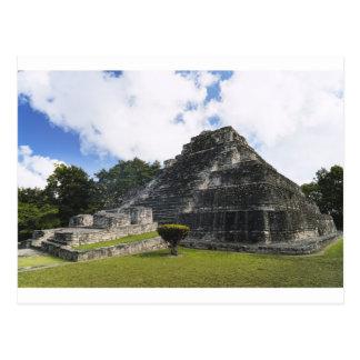Ruínas maias de Chacchoben do Maya da costela Cartão Postal