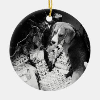 Rupert os enfeites de natal do cão do lebreiro