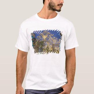 Rússia, Pushkin. Torres do detalhe e de apoio da Camiseta