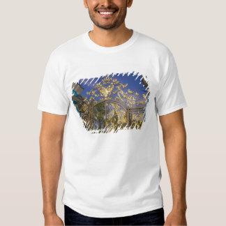 Rússia, Pushkin. Torres do detalhe e de apoio da T-shirts