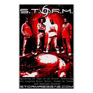 S.T.O.R.M. Poster Pôster
