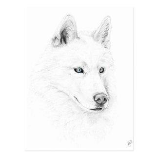 Saber olhos azuis de uma arte do desenho do rouco cartão postal