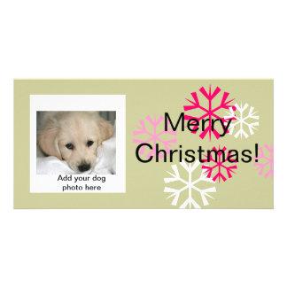 Sábio cor-de-rosa dos cartões de foto de Natal fei Cartão Com Foto